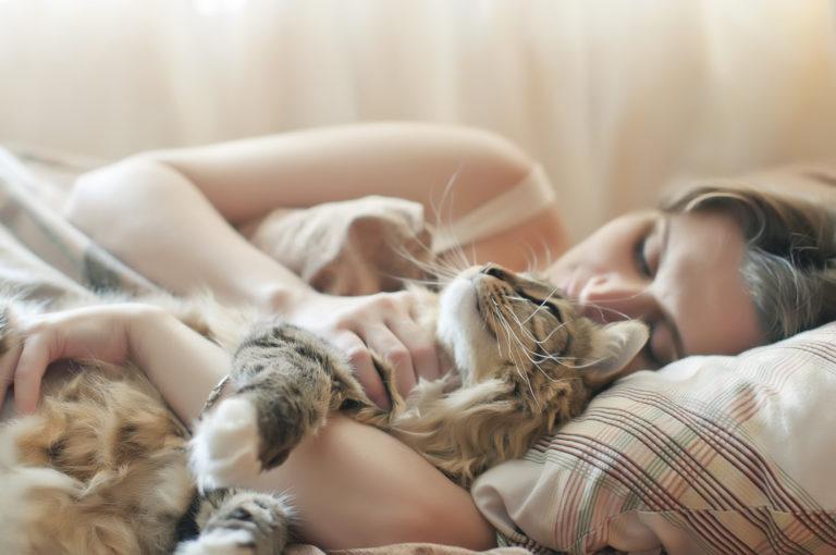 Dormir avec son chat : une bonne idée ?
