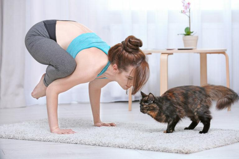 une jeune femme fait du yoga à la maison avec son chat