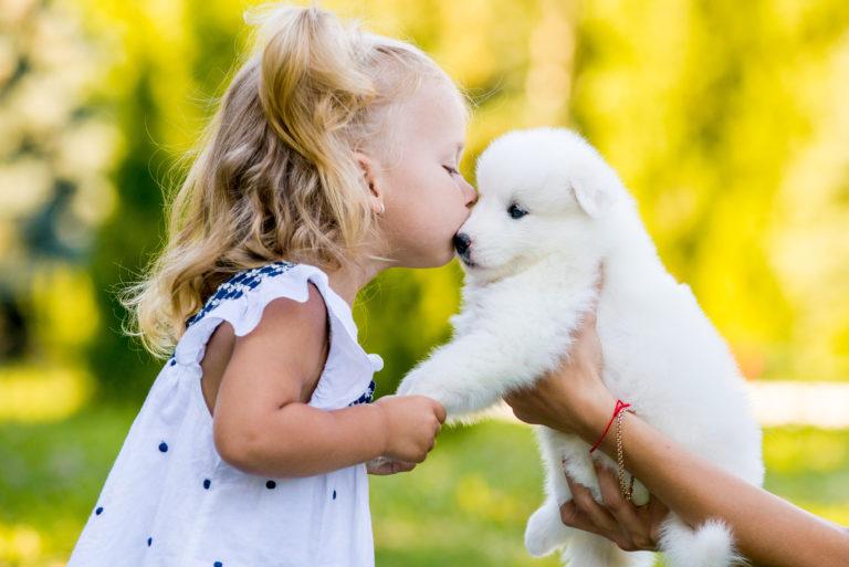 Kleines Mädchen küsst Welpen
