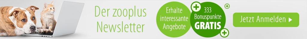 zooplus Newsletter abonnieren