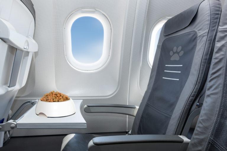 Futternapf im Flugzeug