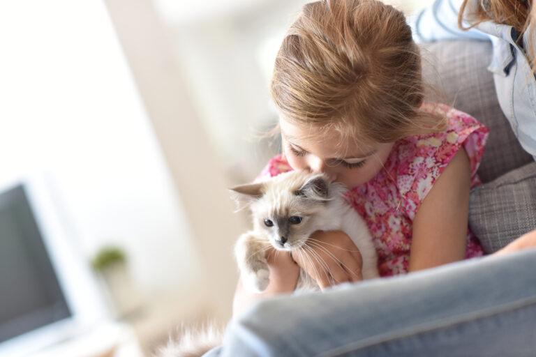 Nahaufnahme von einem Mädchen, das mit einem Kitten kuschelt