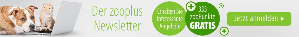 newsletter_anmeldung_desktop