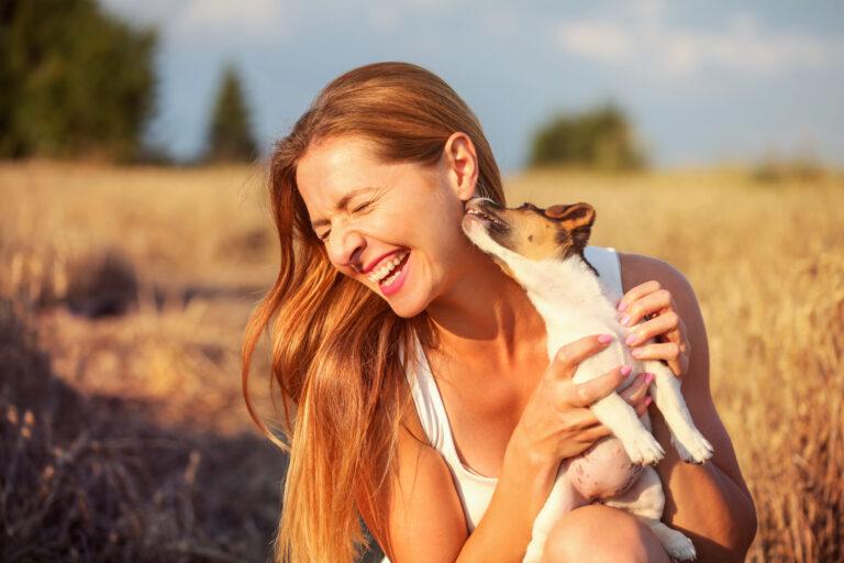 Junge Frau hält Jack Russel in ihren Händen, während der Hund die Frau im Gesicht abschleckt