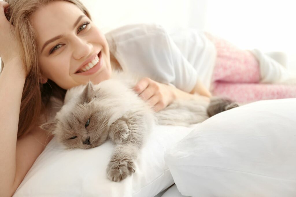 Katzensitter streichelt Katze